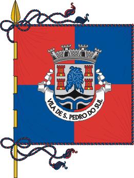 Flag of São Pedro do Sul