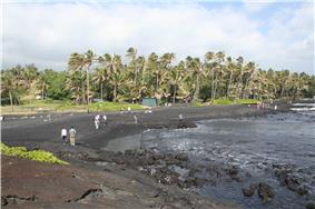 Photo of coastline with 10 people standing or walking on the beach and palm trees in background