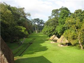A flat, open grassy area bordered by trees with a few thatched rooves covering monuments and a path and drainage channel to the left