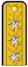 RO-Navy-OF-9s.png
