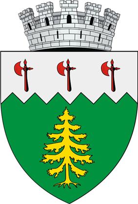 Coat of arms of Câmpulung Moldovenesc