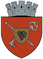 Coat of arms of Huși