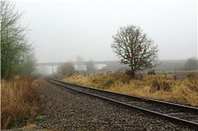 Railroad crossing of the Port of Tillamook Bay Railroad at Wilkesboro Road with Oregon 6 in the distance