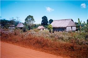 Primitive thatched houses on stilts lining a dusty red dirt road. Surrounding vegetation includes a variety of trees and some banana plants.