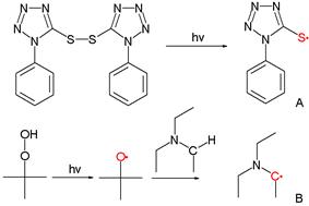 Tetrazole-Derived Thiyl radical