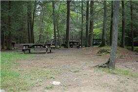 Two picnic tables, a bench and wooden footbridge in a forest
