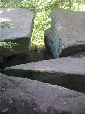 Photo of four large flat-topped boulders divided by narrow splits. Green foliage is visible at the top of the image creating a t-shape in the rocks