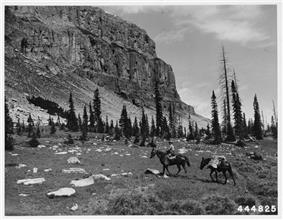 A riding ranger with mules near the Chinese Wall.