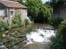 Water flowing through a channel and over a weir between a building and a wall. Vegetation on both sides of the water.