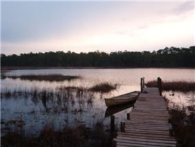 Photograph of the river at dusk in the middle basin, on the right bank near a dock and a canoe looking at the far left bank several thousand yards away lined with slash pines. Tufts of grass are visible in the water.