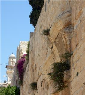 a color photograph looking up at a tall stone and wall showing a few rows of curved voussoir blocks protruding midway up the side