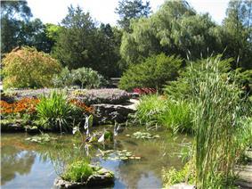 Rock gardens at the Royal Botanical Gardens