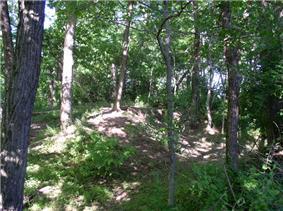 Rowlandton Mound