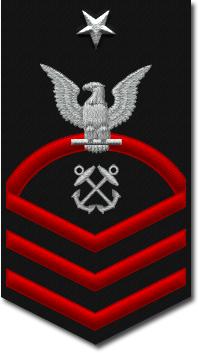 E-8 insignia