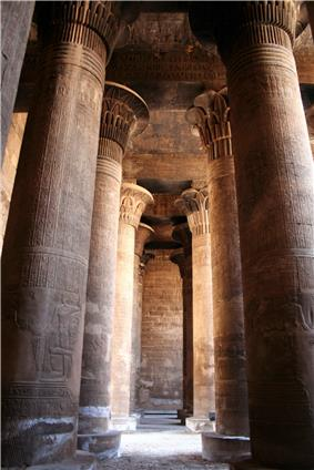 Large, shadowy room filled with tall, thick columns. The column capitals are shaped like stylized flowers.