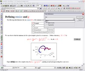 Screenshot of the SWP editor