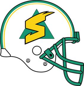 Sacramento Surge helmet