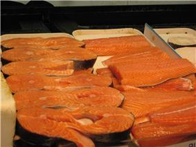 Salmon Fish.JPG