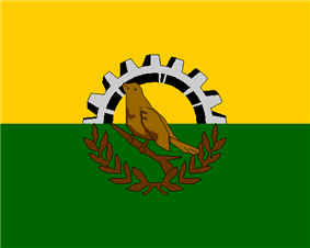 Flag of San Pedro Sula