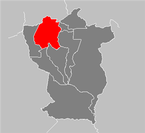 San Carlos Municipality in Cojedes State