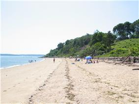 The beach in Sands Point