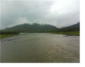 Savitri River near Mahad