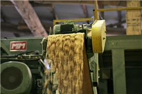 Sawdust waste from mill.jpg