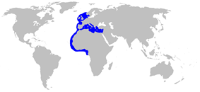 World map with blue outlines on the coastlines of southern Scandinavia, northern Europe, the British Isles, the Iberian Peninsula, the Mediterranean, and northwest Africa as far as the equator