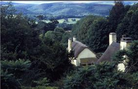 Thatched roofs of white painted houses nestled in tree filled valley.