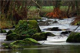 The Semme river near Droux
