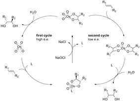 Catalytic cycle of the Sharpless Asymmetric Dihydroxylation