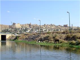 The fortress and town of Shaizar