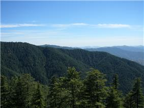 Shimla Himachal India (11).JPG
