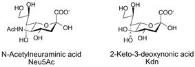 N-acetylneuraminic acid and Kdn, two sialic acids
