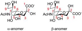 Neuraminic acid anomeric configuration