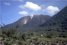 A photograph depicting a blue sky with white clouds at the top, a grey mountain range in the middle, and green foliage at the bottom.