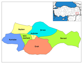Districts of Siirt