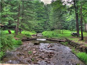 A rockky stream between two grassy banks with picnic tables, forest in the background