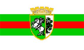 Flag of Sliven
