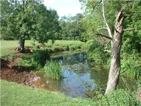 River flowing between grassy banks surrounded by trees.