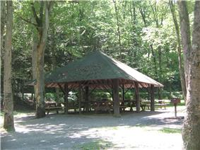 A green pyramidal roof over several picnic tables supported by large wooden pillars, surrounded by trees</center>