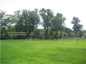 A green soccer field with trees and picnic tables along one edge and a highway bridge behind that