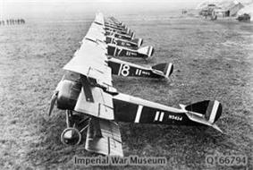 A side-on view of a line of several triplane aircraft. All are painted in dark colours, with white numbers on the side.