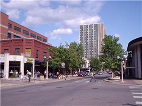 Tree-lined city street, with an apartment tower with columns of windows at the far-end of the street