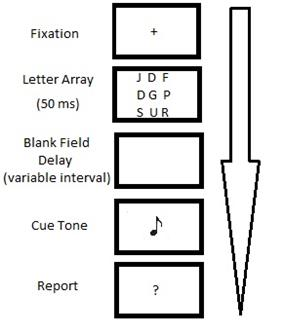 File:Sperling's Partial Report Paradigm.jpg
