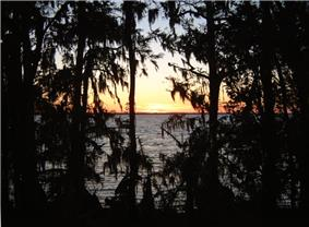 Sunset over a wide river, showing the far bank miles away and the near bank darkened with cypress trees