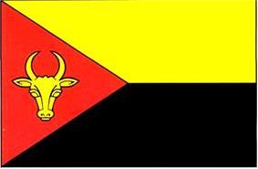 Flag of Anenii Noi