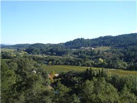 Sterling Vineyards, Napa Valley, California.jpg