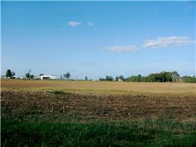 Corn stubble near Weidmanville