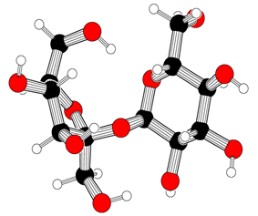 Ball-and-stick model of sucrose